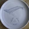rudolf-kurz-evolution-plate-drawing