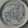rudolf-kurz-plate-drawing-triceratops