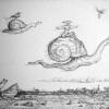 01-snails