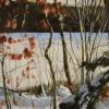 rudolf-kurz-lake-2-early-winter