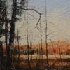 rudolf-kurz-swamp-4-early-light-spring